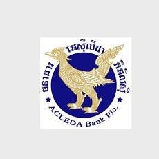 ACELEDA-Logo