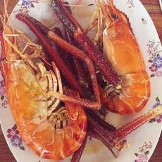 novnis -takeo-lobster